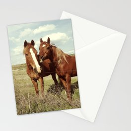 Horse Affection Stationery Cards