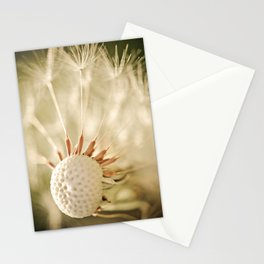 Belle Stationery Cards