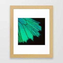 Butterfly Wing Gerahmter Kunstdruck