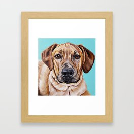Kovu the Dog's pet portrait Framed Art Print