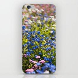 Myosotis flowering in spring iPhone Skin