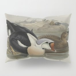 323 Somateria spectabilis. King Duck Pillow Sham