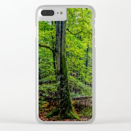 Forest Landscape Clear iPhone Case