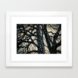tree lights Framed Art Print