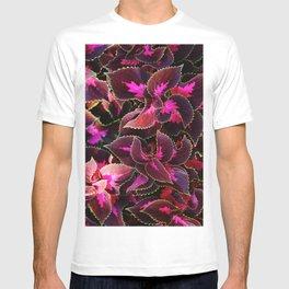 Intricate Coleus Design T-shirt