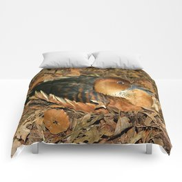 Fulvous Whistling Duck Comforters