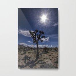 Joshua Tree and Sunshine in Joshua Tree National Park California Metal Print