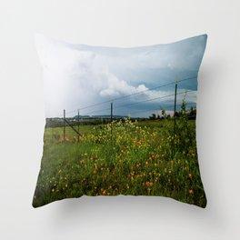 Texas Wildflowers - Retro Style Art of Flowers Along Fenceline Throw Pillow
