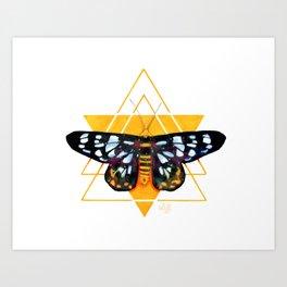 Mystic Moth 2 - Night Flyers Art Print