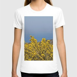 Landscape on mountain with blue sky T-shirt