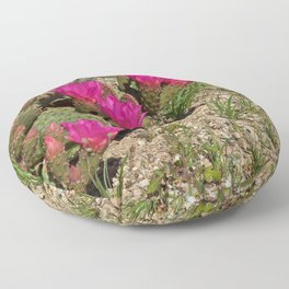 Beavertail Cactus in Bloom Floor Pillow