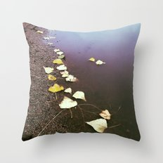 In This World Throw Pillow