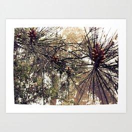 Forest rain drops Art Print