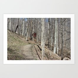 Forest Farm Art Print