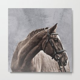 BLAZE AND BRIDLE Metal Print