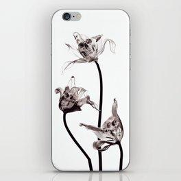 SKULL  X-RAY iPhone Skin