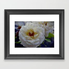Bloom in White Framed Art Print