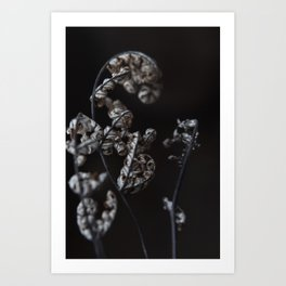 my winter Art Print
