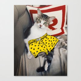 Cat in Underpants Canvas Print