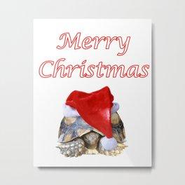 Christmas Sulcata Metal Print
