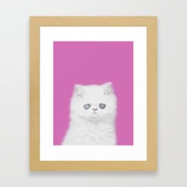 Lord Aries Cat - Photography 002 Framed Art Print