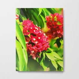 Floral collection Metal Print