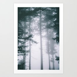 Moody Forest II Art Print