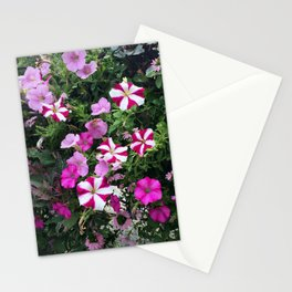 Flowers in Pink & White Stationery Cards