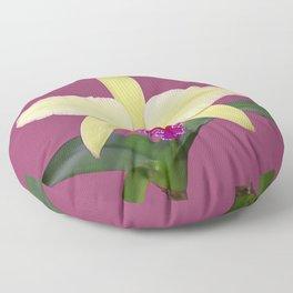 Stunning cream and magenta orchid flower Floor Pillow