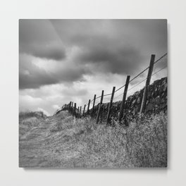 Along The Wire Metal Print