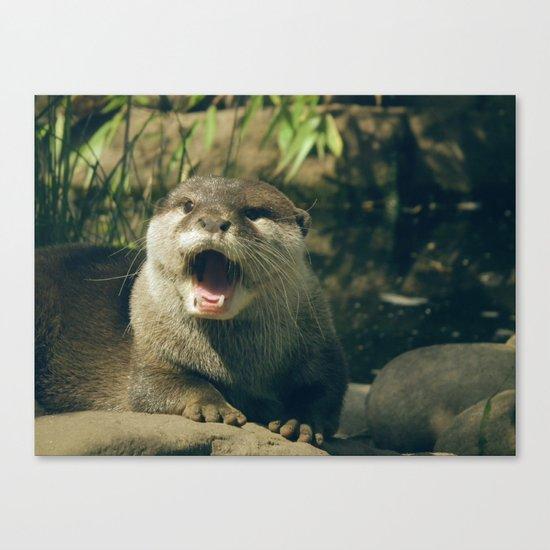 Otter - yawn Canvas Print