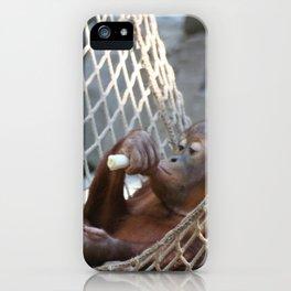 OrangUtan_2014_1202 iPhone Case