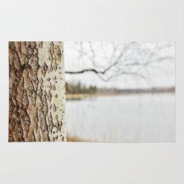 Aspen bark and gray lake Rug