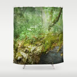 Where Miracles Are Born Shower Curtain