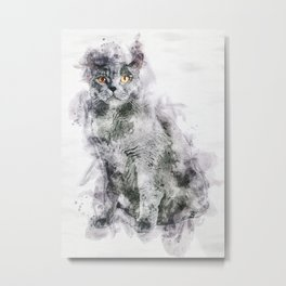 British Blue Cat Metal Print