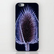 Blue Teasel iPhone & iPod Skin