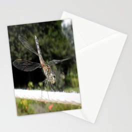 Walking The Line Stationery Cards
