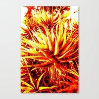 cacti Canvas Prints featuring CACTI by Charles Harry Mackenzie