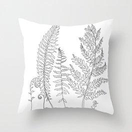 Minimal Line Art Fern Leaves Throw Pillow