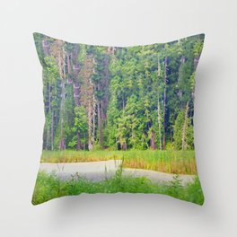 Within the Polder Waters Throw Pillow