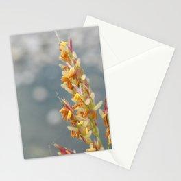 September Stationery Cards