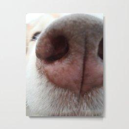 Sniff-Sniff Metal Print