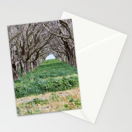 Nature - Crow's Landing Trees 2 Stationery Cards