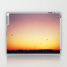 In Flight Laptop & iPad Skin