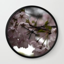 Dreamy Cherry Blossoms 2 Wall Clock