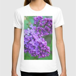 Lilacs Almost in Full Bloom T-shirt