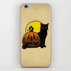 Still Life with Feline and Gourd iPhone & iPod Skin