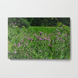 Legacy of the Highlands Metal Print