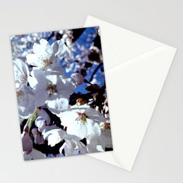 Anticipation Of Spring Time Blossoms Stationery Cards