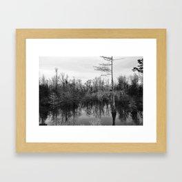Mississippi Swamp Framed Art Print